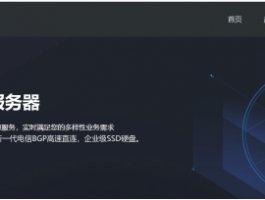 乐易云 – 香港CN2专线 云服务器,站群服务器  云服务器买一送一