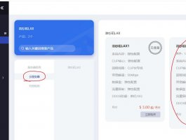 KURUN:$6/月/2核/2GB内存/10GB SSD空间/500GB流量/100Mbps端口/KVM/洛杉矶/回程9929